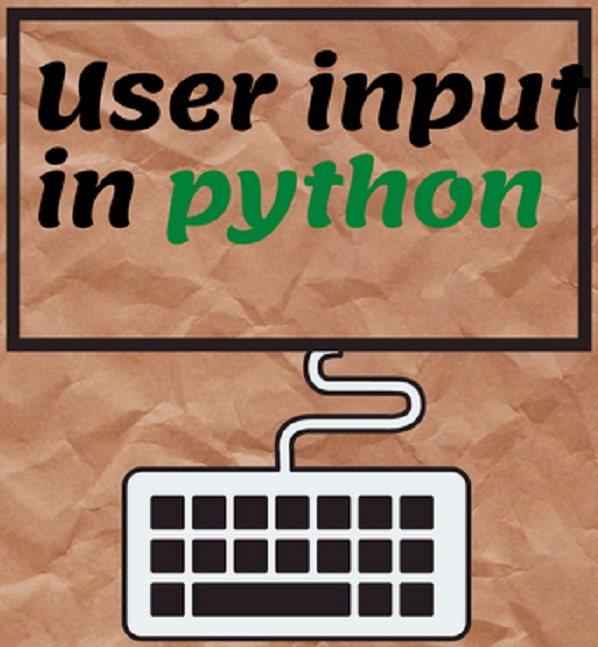 How to get input from user in python ?