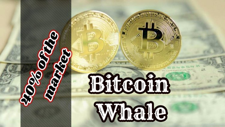 """Bitcoin Whale"" world: 2500 accounts control 40% of the market"