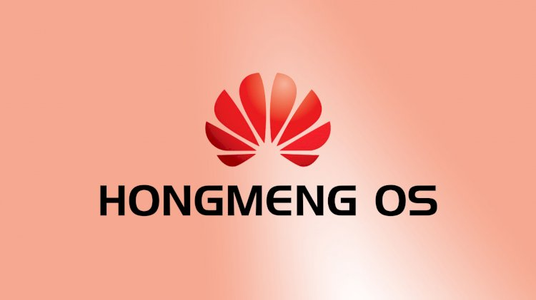 Hongmeng OS native version 1.0 and 1.01 were released